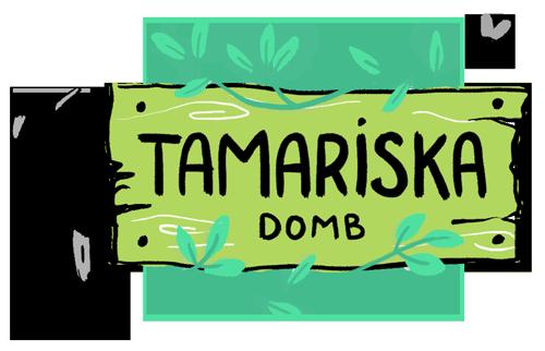 Szabadtéri kincsereső játék - Királyerdő Kincsei - Tamariska domb